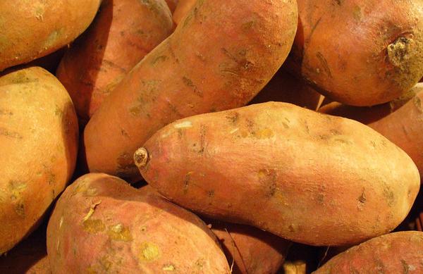 Sladek krompir in njegovi ugodni učinki na zdravje